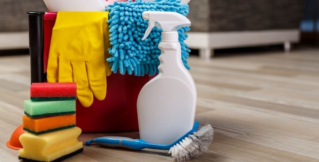 Reasons Why You Should Hire a Professional for Carpet Cleaning