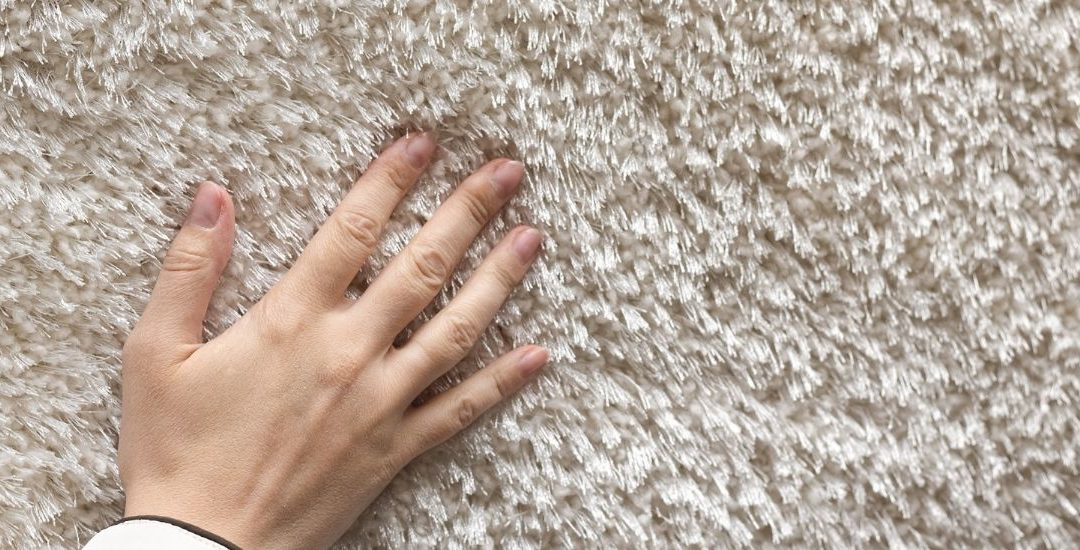 How to maintain your carpet